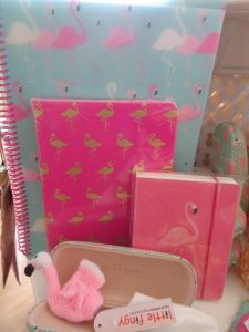 flamingo stationery, flamingo stationery for sale in bude, flamingo gift items for sale bude, where can I get flamingo styled stuff