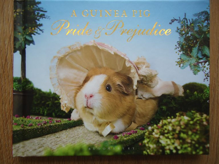 guinea pigs pride and prejudice book, variations on pride and prejudice by Jane austen, I want a pride and prejudice with a difference, the costume rooms in bude, gift shops in ude, quirky stationery gift ideas for bude in north cornwall