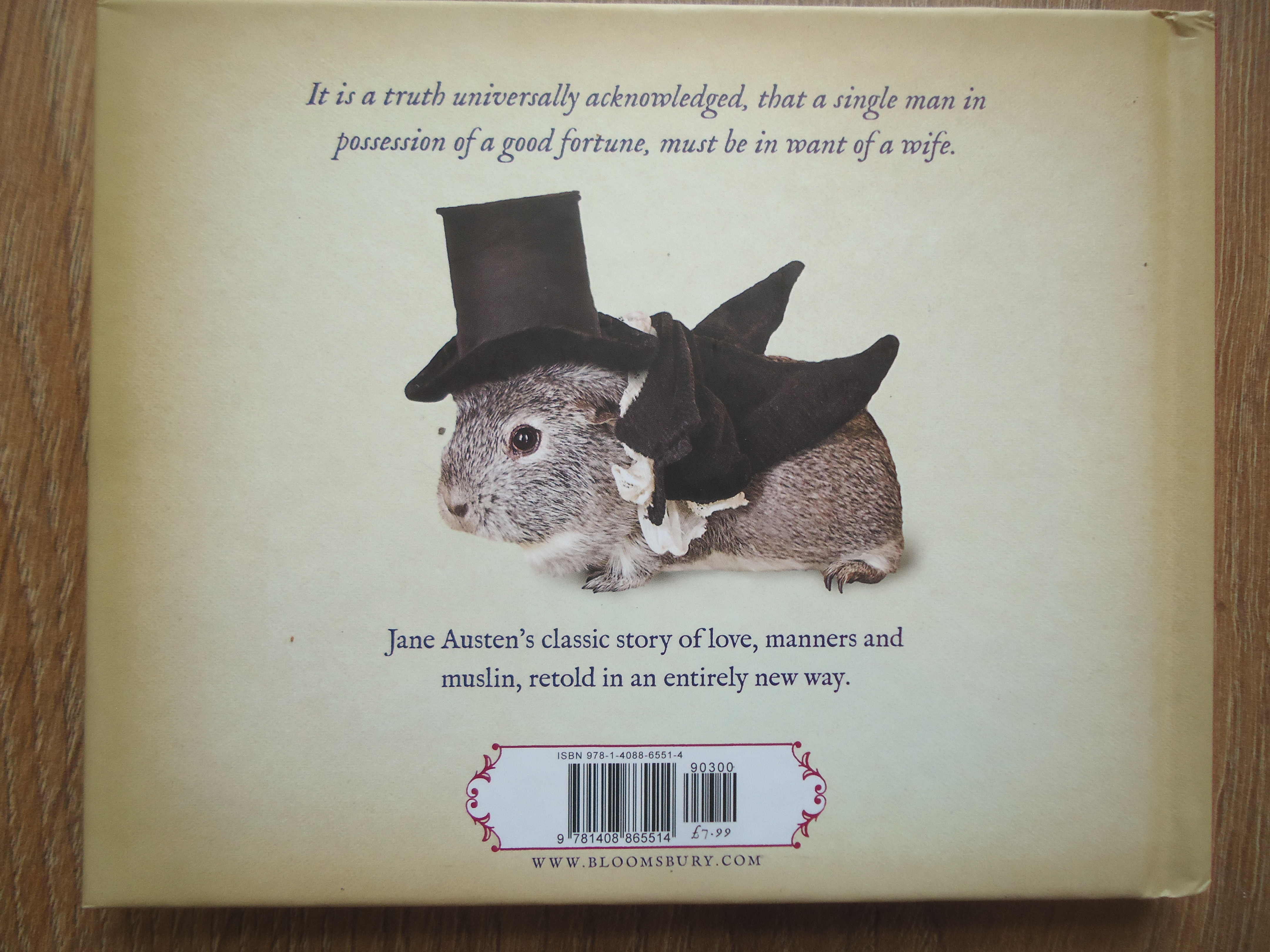 I need a jane austen gift, pride an dprejudice gift ideas, fun classic lit books, stocking fillers, historical classics , the costume rooms - hstorical gifts,
