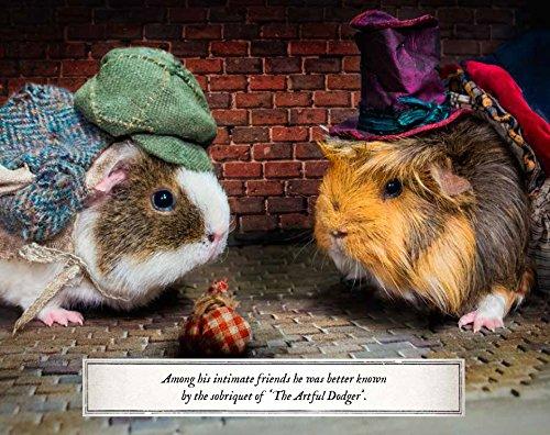 guinea pig oliver twist image, dickens based gift ideas, charles dickens paraphernalia. I love dicks gift ideas