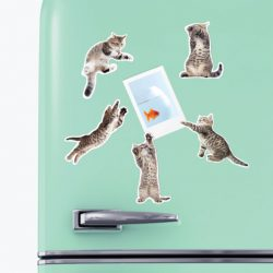 action cat fridge magnets - online magnet gift ideas