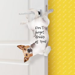 dog hanging sticky notes large - funky stationery shops online