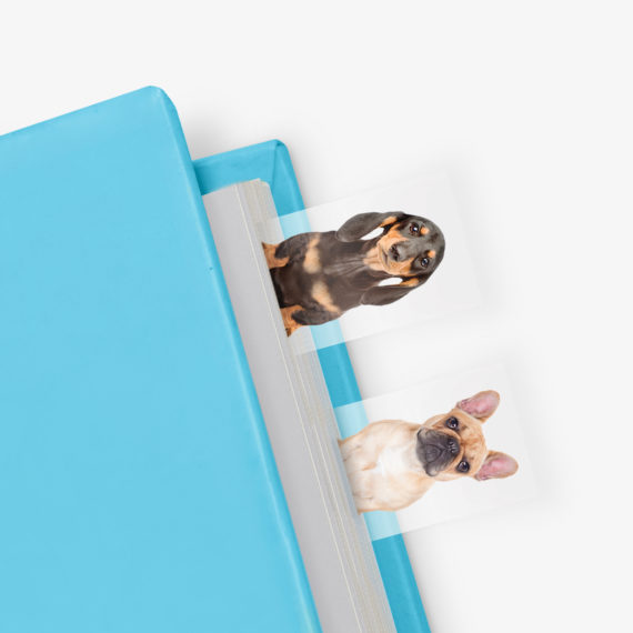Dog in a book page tabs by Mustard - online stockists