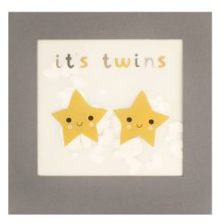 eco friendly birthday cards - plastic free and recyclable. It's twins new born card