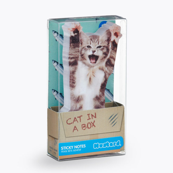 cat lover themed stationery - what do i get my crazy cat lover of a friend