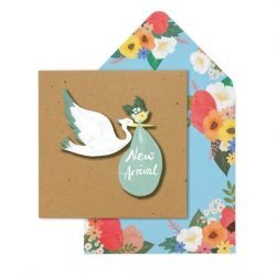 new born bay cards - stork baby cards - online cards shops