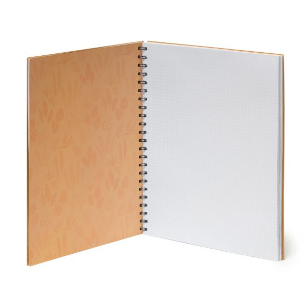 I want to get notebooks in bude north cornwall Uk - what shops are in bude