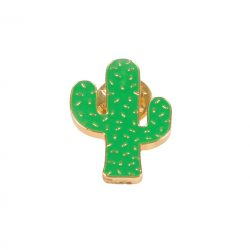funky cactus punk badges - is tehre a range of pins you can put on your school bag