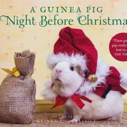 Guinea Pig Classics