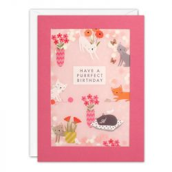 costume rooms - cat lover - birthday card