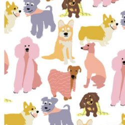 can you get wrapping of different types of dogs - colourful puppy wrapping paper